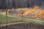 Prarie Burn setting head fire by Pat Heithaus and Ray Heithaus