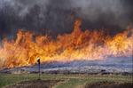 Prairie Burn head fire 2 by Pat Heithaus and Ray Heithaus