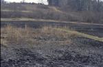 BFEC Prarie post burn hill