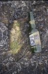 BFEC Prarie bottle and protected grass