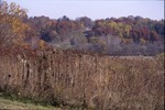 Fall view from Hill-KCES