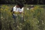 Animal behavior-Beetle study, Don Schrank, Kenyon Ogburn