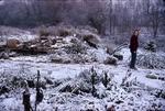 1st snow in KCES Garden, Pat