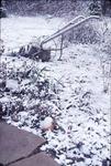 KCES-1st snow; garden