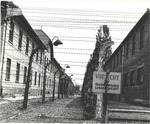 Grim Barbed Wire in Poland