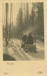 Feldpost Postcard of a Winter Scene from Member of Police Battalion 303