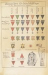 Postcard of Nazi Concentration Camp Chart of Prisoner Markings