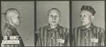 Polish Prisoner at Auschwitz