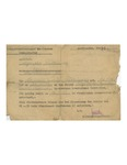 Mauthausen Camp Death Certificate