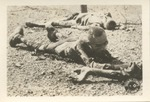 Army Signal Corps Photos of Nazi Atrocities