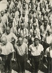 Roll-call in the Dachau concentration camp