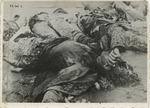 Post War Liberation Photos of Dachau Concentration Camp April 29 - May 10, 1945