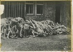 Post War Liberation Photos of Dachau Concentration Camp April 29 - May 10, 1945