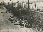 "Official French Photograph: ""Atrocities at Bergen-Belsen"""