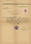 Hungarian Permission Regarding Star of David Badge