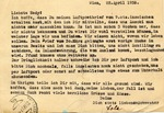 Postcard Airmail from Vienna to Palestine After Anschluss