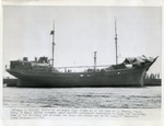 Copy of Press Photo of Fede at Spezia, Italy Dock with Jewish Refugees