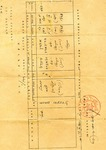 Jewish Birth Certificate From Cyprus Displaced Persons Camp