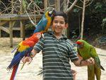 Roberto with parrots during his sixth-grade trip to Copán Ruins, Honduras by Roberto Vasquez