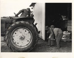 Shinaberry Father and Son with Tractor