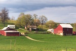 Hall Family Farm