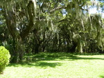 Gullah Cemetery off Eddings Point