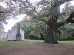 McCleod Plantation