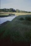 North Fork of Kokosing River by Susan S. Hanson