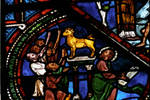 Sens Cathedral, St. Etienne (St. Stephen), apse window L, Good Samaritan Window, Israelites worshiping the golden calf, 13th century, Gothic, stained glass, France.