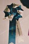 A Ribbon from the Knox County Fair