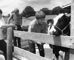 Dan Younger, Family washing and grooming livestock, Junior Fair, Knox County Fair, Mount Vernon, OH, 1994