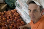 Man stands above crates full of peaches