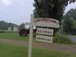 Red Twigg Farm
