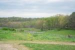 The Farm on Kenyon Road (Benji Ballmer)