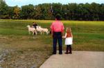 Dudgeon Farm Family Examining Sheep