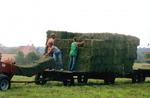 Dudgeon Family Farm Packing Hay