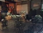 Rooted Reception at MTVarts Warehouse