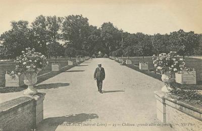 Cháteau de Chenonceaux - grande allée des jardins