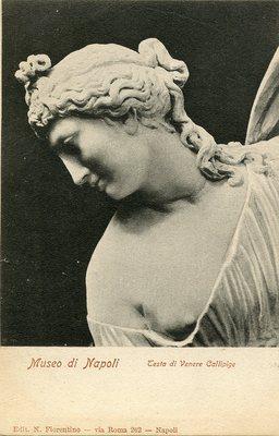 Museo di Napoli - Testa di Venere Callipige