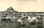 Grèves du Mont-Saint-Michel