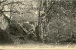 Forêt de Fontainebleau - Gorge aux Loups