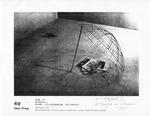 """Bird Trap"" design sketch ""捕鸟器""设计草图 by Wang ZHAN 展望"