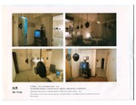 Project Proposal - Amplification Site: A Cross Echoin a Private Living Space 扩音现场:一个私人生活空间的交叉回声